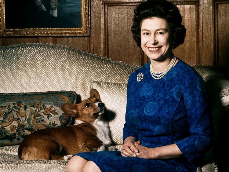 Королева Елизавета ІІ со своим вельш-корги