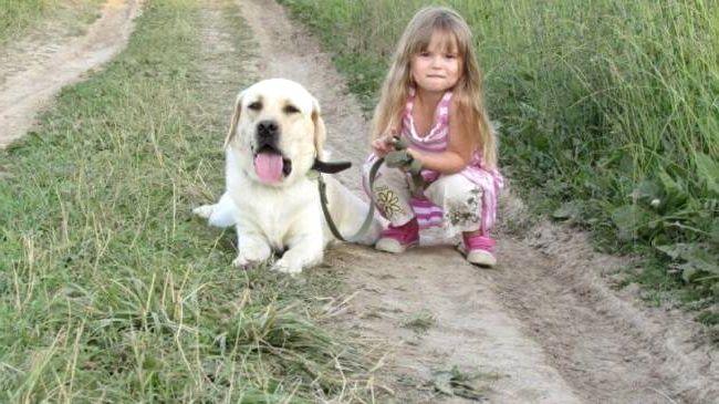 Алабай ДРЕССИРОВКА щенка